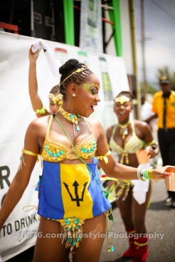 tj876 Jamaica Carnival Road March 2013-129