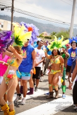 tj876 Jamaica Carnival Road March 2013-17