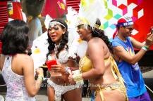 tj876 Jamaica Carnival Road March 2013-2