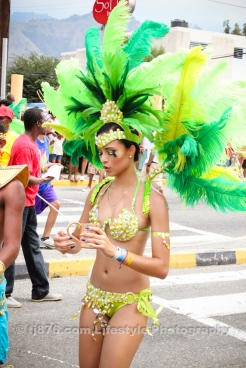 tj876 Jamaica Carnival Road March 2013-24