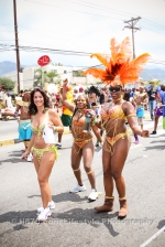 tj876 Jamaica Carnival Road March 2013-8