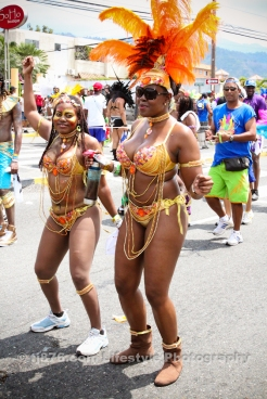 tj876 Jamaica Carnival Road March 2013-9