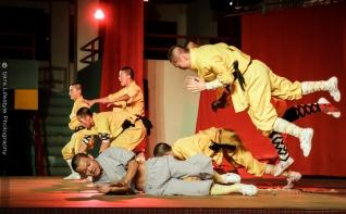 tj876 Shaolin Temple Warrior Monks-21