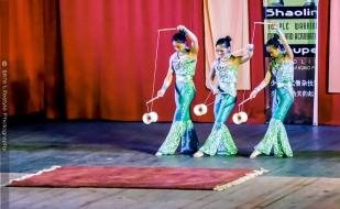 tj876 Shaolin Temple Warrior Monks-5