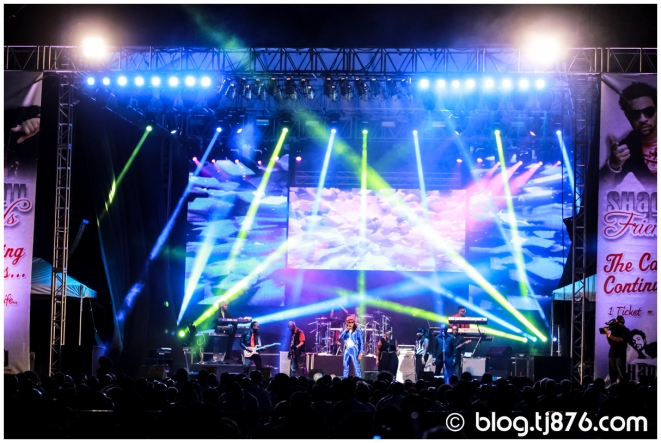 tj876 - Shaggy and Friends 2014 (01)