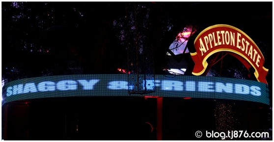 tj876 - Shaggy and Friends 2014 (07)