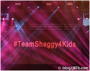 tj876 - Shaggy and Friends 2014 (13)
