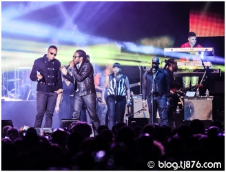 tj876 - Shaggy and Friends 2014 (22)