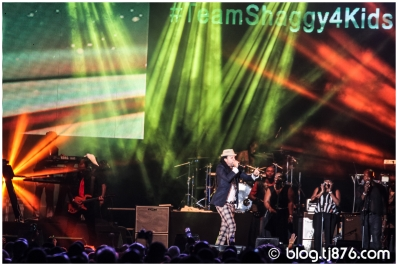 tj876 - Shaggy and Friends 2014 (28)