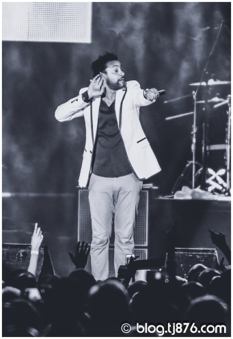 tj876 - Shaggy and Friends 2014 (42)