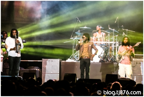 tj876 - Shaggy and Friends 2014 (59)