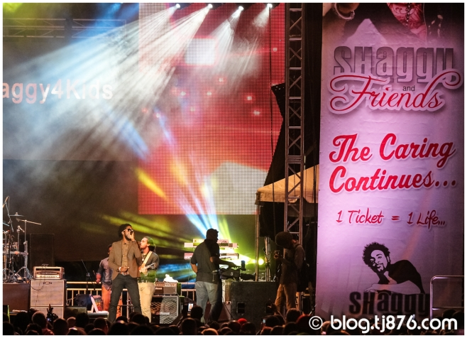 tj876 - Shaggy and Friends 2014 (61)