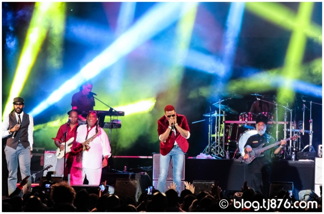 tj876 - Shaggy and Friends 2014 (69)