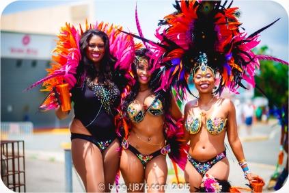 tj876 Jamaica Carnival 2015 (10)