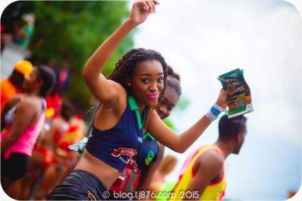 tj876 Jamaica Carnival 2015 (101)