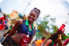 tj876 Jamaica Carnival 2015 (102)