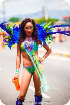 tj876 Jamaica Carnival 2015 (11)
