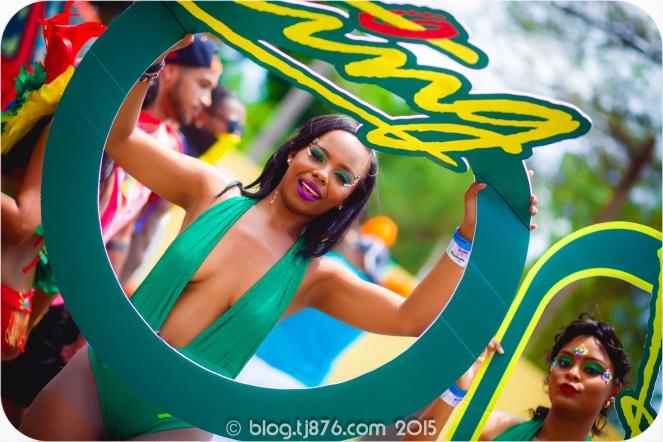 tj876 Jamaica Carnival 2015 (111)