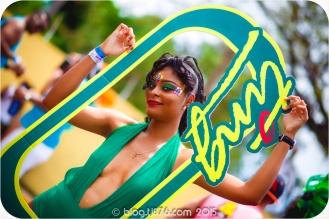 tj876 Jamaica Carnival 2015 (112)