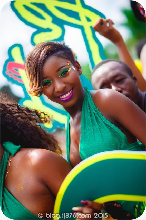tj876 Jamaica Carnival 2015 (116)
