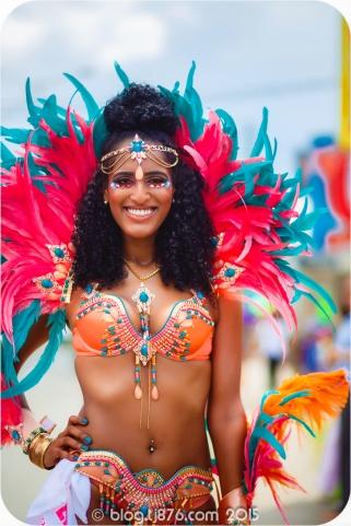 tj876 Jamaica Carnival 2015 (12)