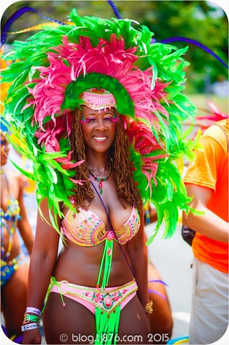 tj876 Jamaica Carnival 2015 (127)