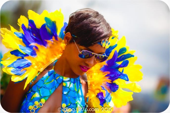 tj876 Jamaica Carnival 2015 (129)