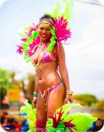 tj876 Jamaica Carnival 2015 (132)