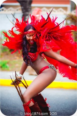 tj876 Jamaica Carnival 2015 (135)