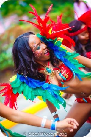tj876 Jamaica Carnival 2015 (136)
