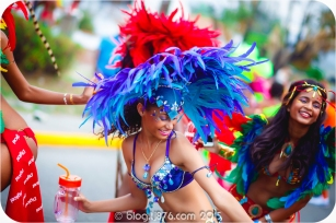 tj876 Jamaica Carnival 2015 (137)