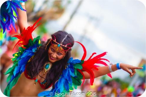 tj876 Jamaica Carnival 2015 (138)