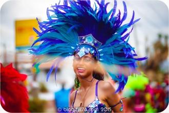 tj876 Jamaica Carnival 2015 (139)
