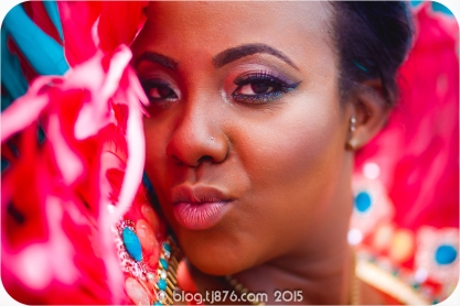 tj876 Jamaica Carnival 2015 (14)
