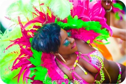 tj876 Jamaica Carnival 2015 (142)