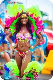 tj876 Jamaica Carnival 2015 (144)