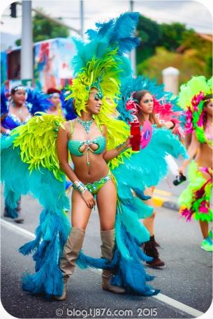 tj876 Jamaica Carnival 2015 (145)