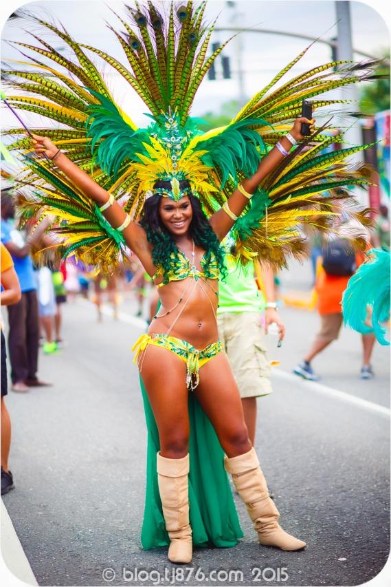 tj876 Jamaica Carnival 2015 (146)