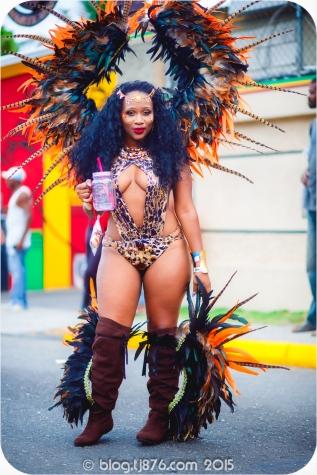 tj876 Jamaica Carnival 2015 (149)