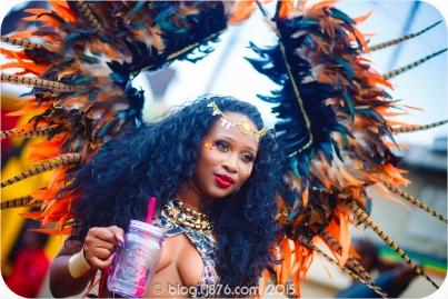 tj876 Jamaica Carnival 2015 (150)