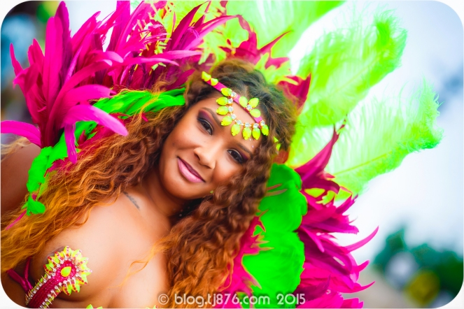 tj876 Jamaica Carnival 2015 (151)