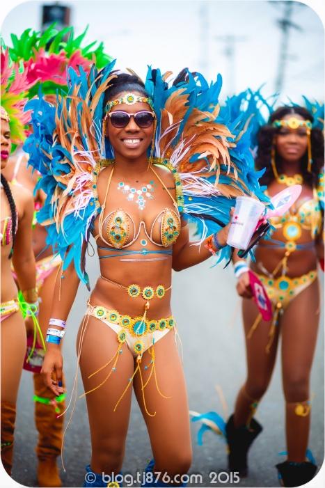 tj876 Jamaica Carnival 2015 (153)