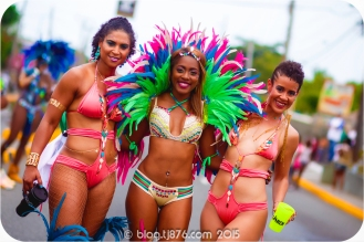 tj876 Jamaica Carnival 2015 (156)
