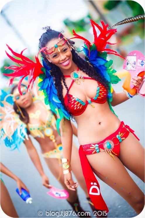 tj876 Jamaica Carnival 2015 (157)