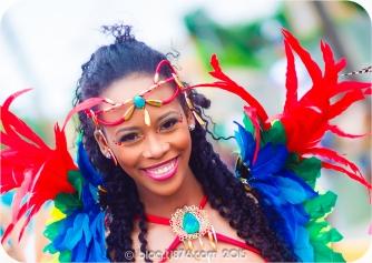 tj876 Jamaica Carnival 2015 (158)