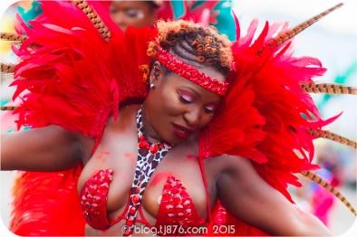 tj876 Jamaica Carnival 2015 (16)