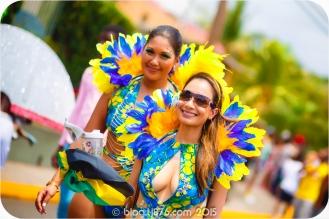 tj876 Jamaica Carnival 2015 (161)
