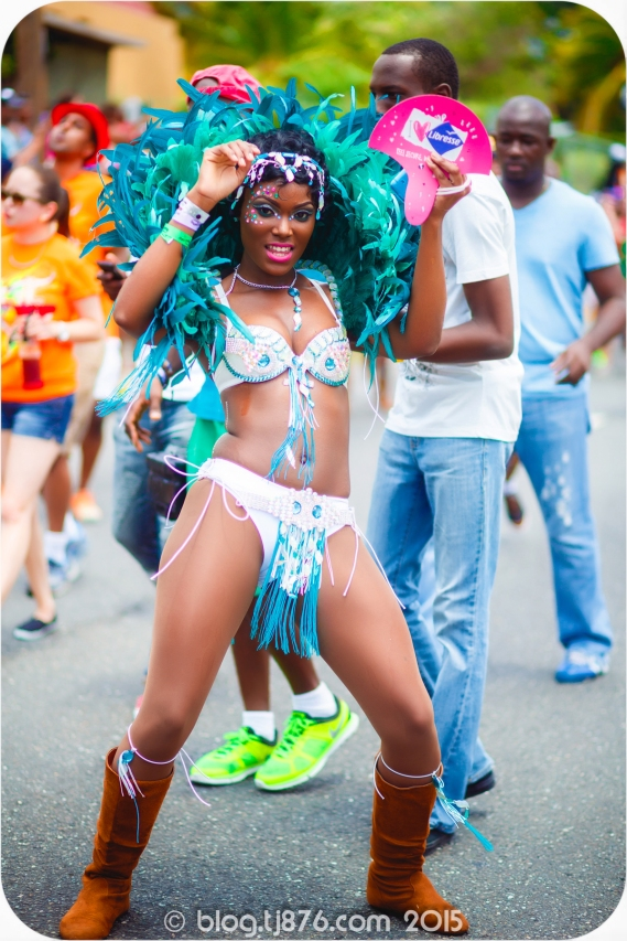 tj876 Jamaica Carnival 2015 (162)