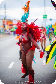 tj876 Jamaica Carnival 2015 (17)