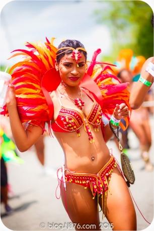 tj876 Jamaica Carnival 2015 (175)